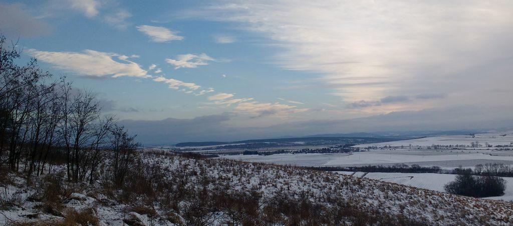 Błękity polskie zimowe polne.