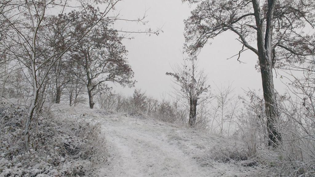 I coraz więcej śniegu i coraz ciszej.
